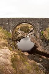 Ponts / Bridges