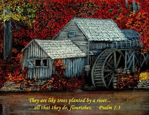 25B - Psalm 1