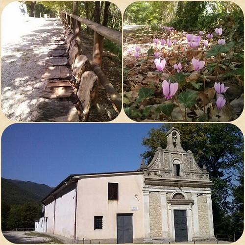#madonna #santuario #candelecchia #ciclamininani e #vecchiepanchina #today #trasacco