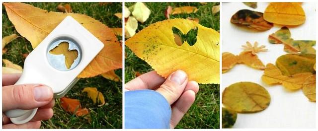 Confettis de feuilles