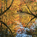 Settingdown Creek, Poole's Mill Park, Forsyth County, Georgia 1 by Alan Cressler