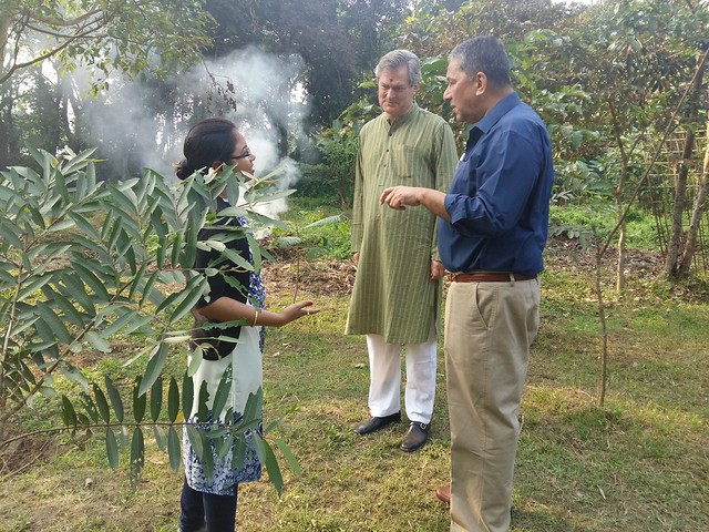 Exchange of interesting thoughts on Plant species