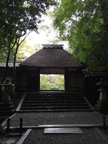 雨の法然院