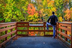 Lake Virginia Fall Cover Photo