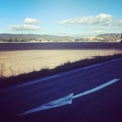 Follow the arrow. #cycling #velo#wilier #elemnt