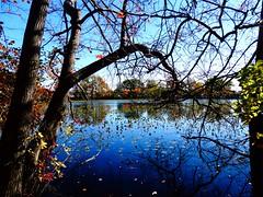 Mill Pond Park -- Autumn (58)