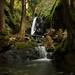 Karst Creek Falls by Brad Darling Photography
