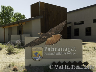 Pahrangat National Wildlife Refuge - Val in Real Life