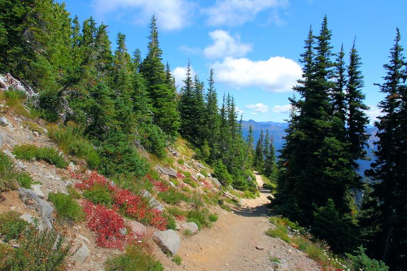 IMG_8866 Sunrise Rim Trail