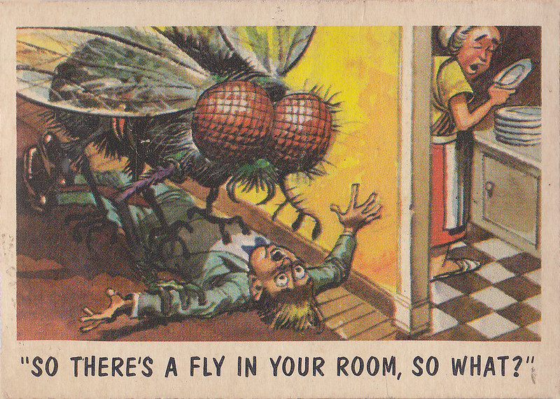 """You'll Die Laughing"" Topps trading cards 1959,  illustrated by Jack Davis (37)"