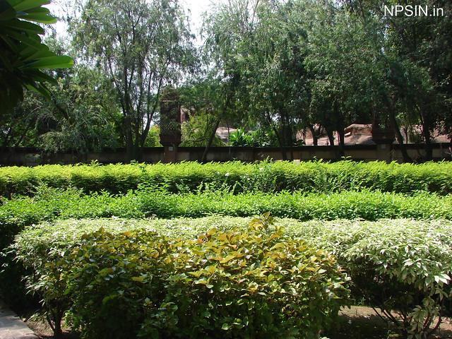 Beautiful Green Area