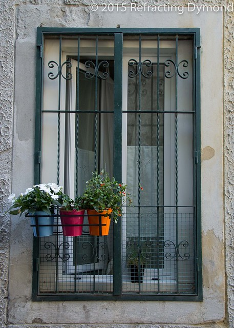 Three Planters in a Window