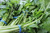 Turnip Greens at Richmond Farmer's Market