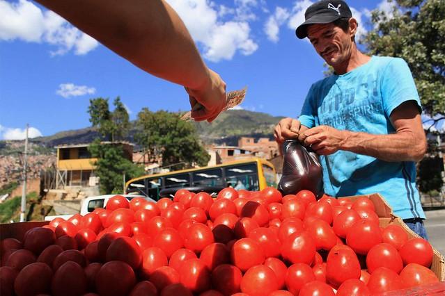 tomates_big
