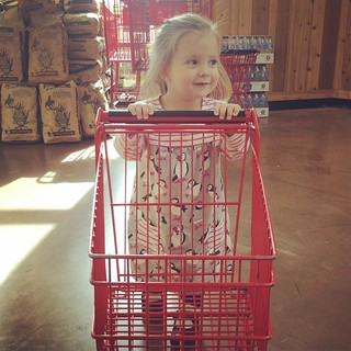 While Claire was at Catechesis this morning, Maggie was thrilled to accompany me on a Trader Joe's excursion (where we stocked up on http://adamandcaitlin.blogspot.com/?m=1unnecessary pumpkin treats of course).
