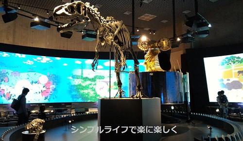 東京3日目、博物館隕石・アロサウルス・ひまわり