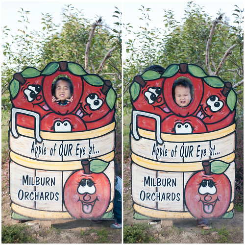 Milburn Orchards - Fall 2015