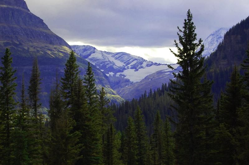 jackson-glacier