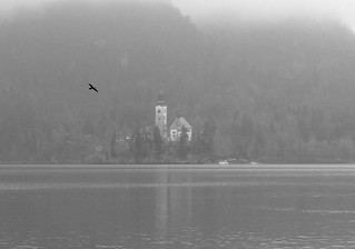 Lake Bled in the fog