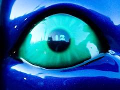 Fuel Pig's Eye