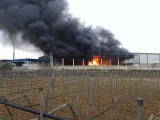 Rutigliano- Incendio zona Pip Via Conversano (1)