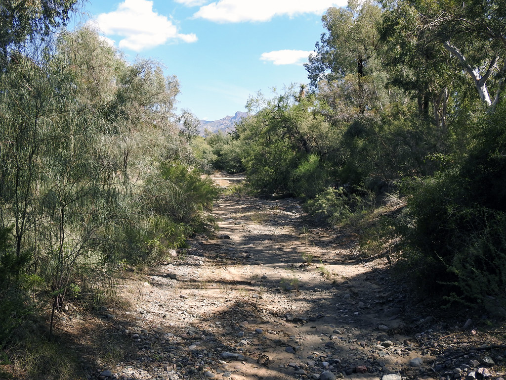 East Fork Roblas Canyon Arizona Around Guides