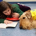 Georgetown Branch PAWS to Read on November 8, 2016 by ACPL