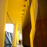 Yellow and yellow... Fondation Vuitton by Frank Gehry