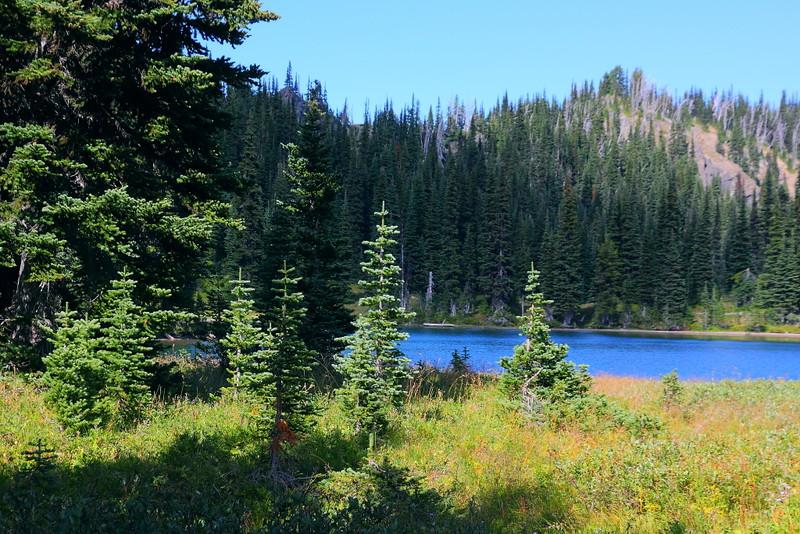 IMG_6355 Clover Lake, Palisades Lakes Trail