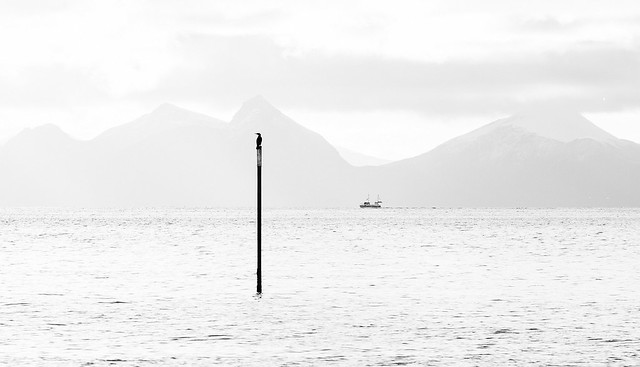 Tilbakeblikk, Lofoten #20