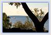 Wishbone View by bigbrowneyez