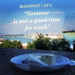 #budapest #winefestival #borfesztival2015