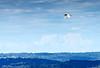Flight In a Cool Breeze by Supereg01