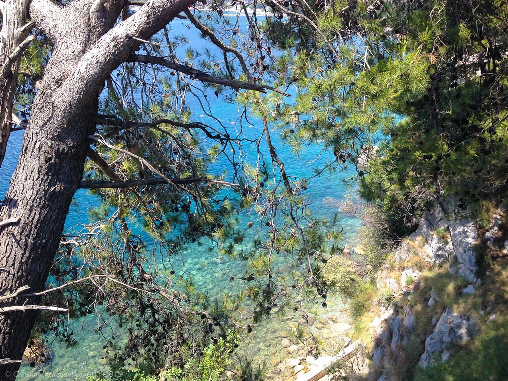 Montenegro [70]: Budva