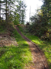 Green-to-Cedar Rivers Trail Extension