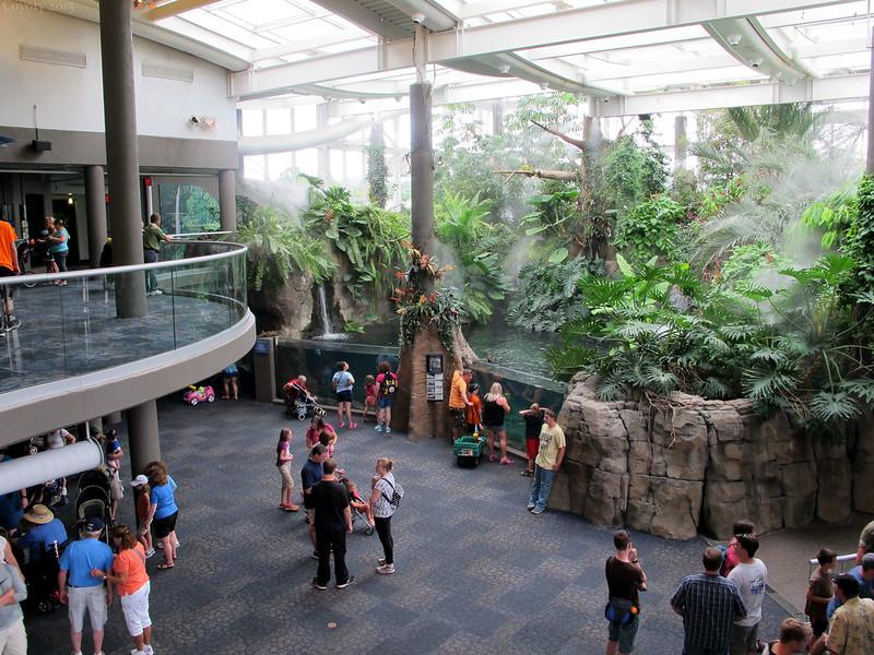 PPG Aquarium atrium