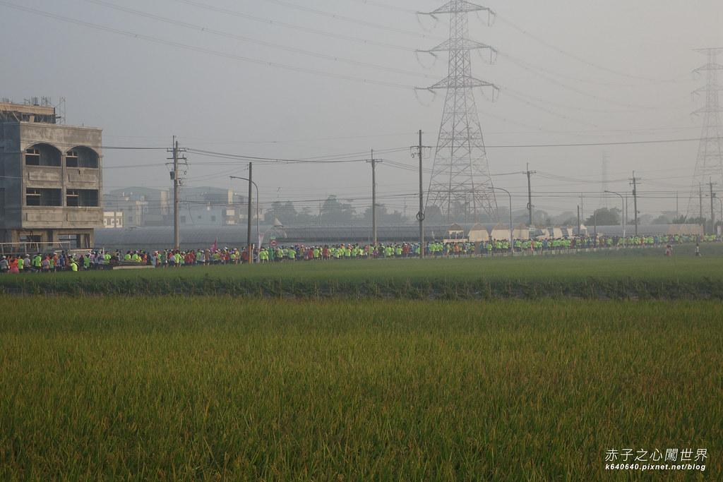 2015田中馬拉松-031