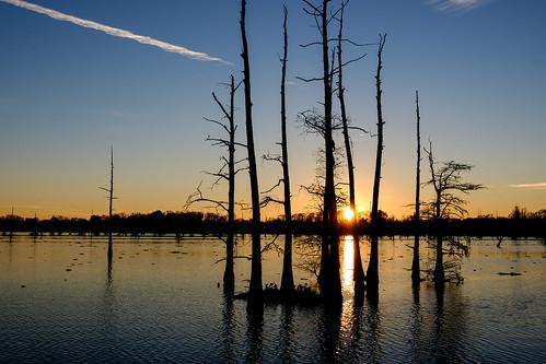 trees sunset water louisiana bayou vaportrail blackbayoulakenationalwildliferefuge fujifilmxe2 fujinonxf18135mmf3556rlmoiswr