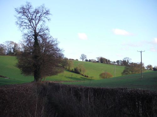 Valley at bottom of Lownde's Wood, near Chartridge