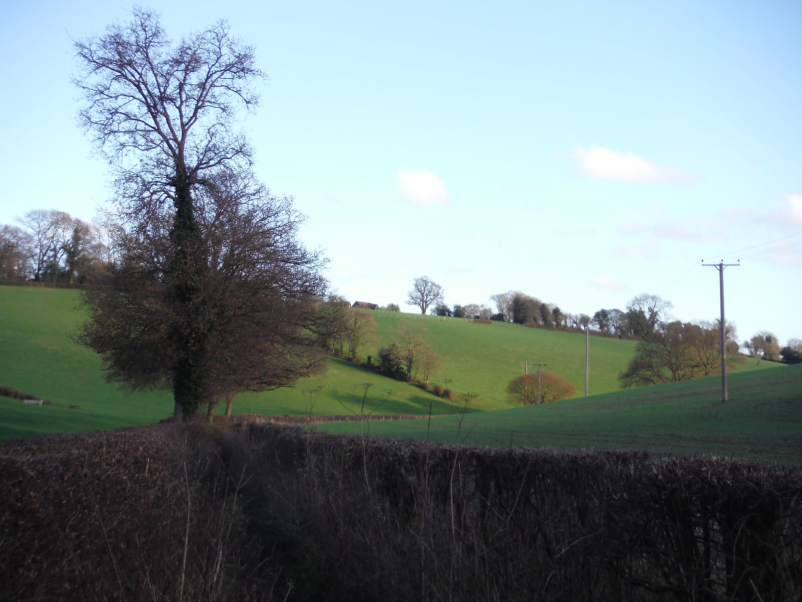 Valley at bottom of Lownde's Wood, near Chartridge SWC Walk 140a Wendover to Great Missenden