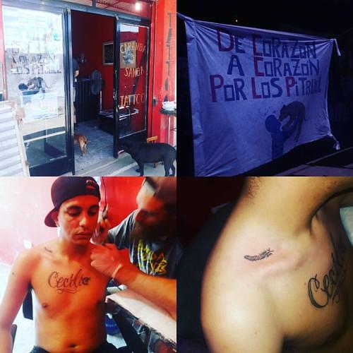 #DeCorazonACorazonPorLosPitbull #Tatoo por $150 a #Beneficencia para #Pitbull rescatados , por hoy en Manuel Arias 4139 Gonzalez Catan.  Hasta mi mama se tatuo...