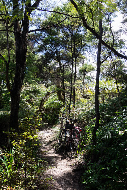 Royal Albany Trails