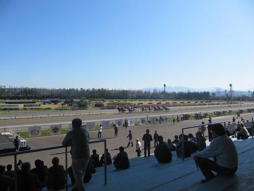金沢競馬場の直線の様子
