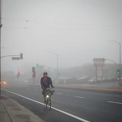 Foggy morning #bikecommute in the Santa Cruz Mountains of California.  #fog #cycling #monday