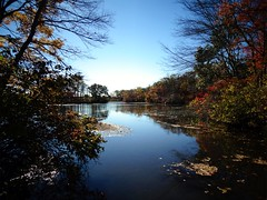 Mill Pond Park -- Autumn (100)