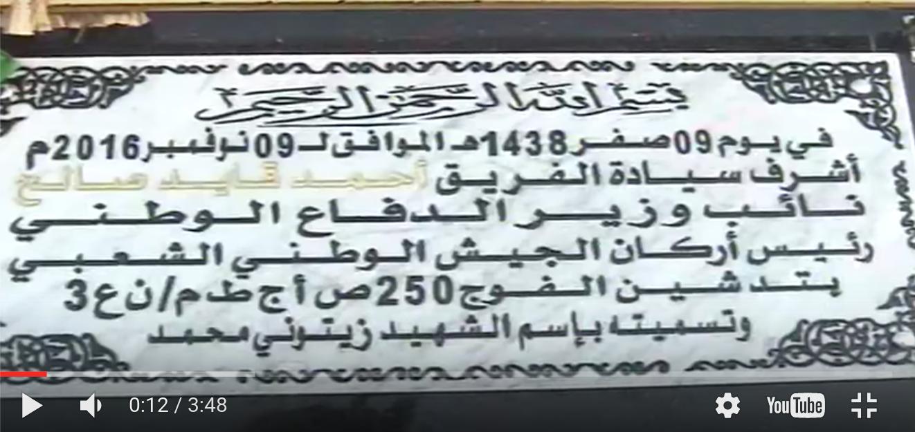 الجزائر : صلاحيات نائب وزير الدفاع الوطني - صفحة 5 30796513312_2dae044a44_o