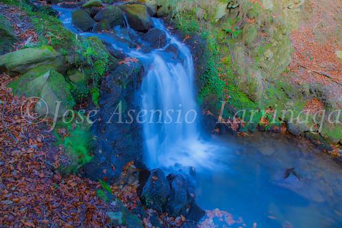 Parque Natural de Gorbeia #DePaseoConLarri #Flickr -2849
