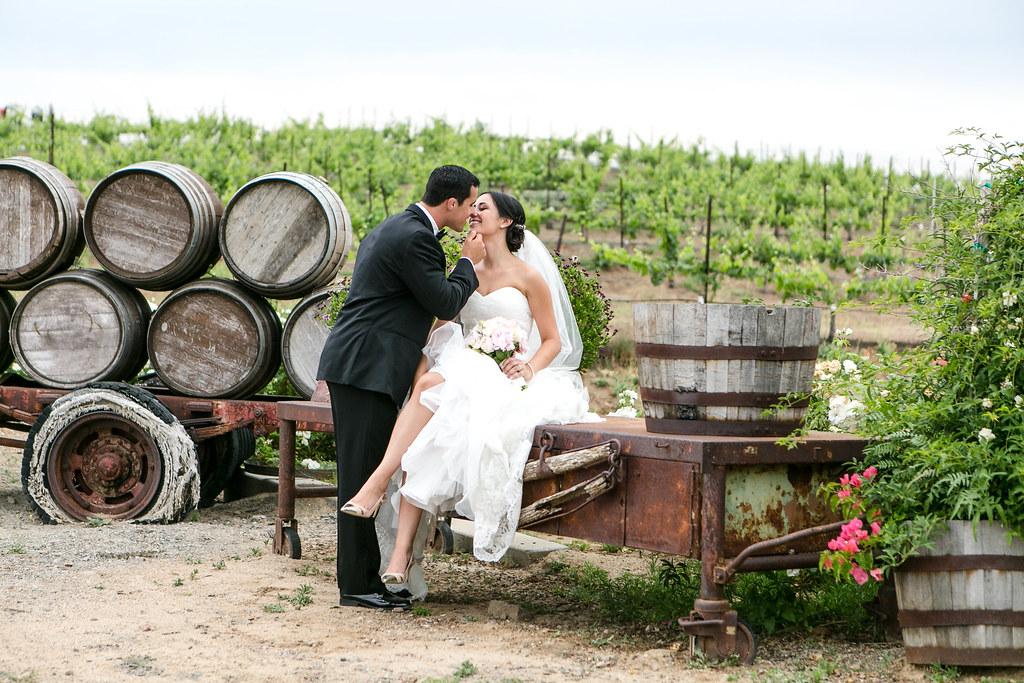 Door county vineyard wedding