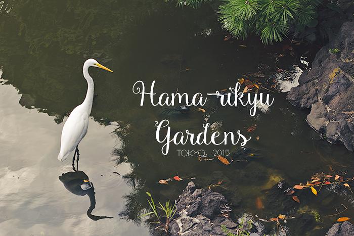Hama-rikyu-Gardens-1