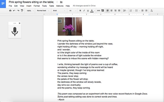 Kevin's Meandering Mind | Typing with My Voice: A Poem